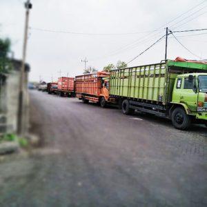 Jasa angkutan Alat Berat, Ekspedisi dan trucking murah Surabaya Makasar, Balikpapan, Pontianak, Bali